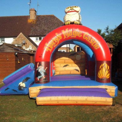 Harrys Magic Bouncy Castle and Slide